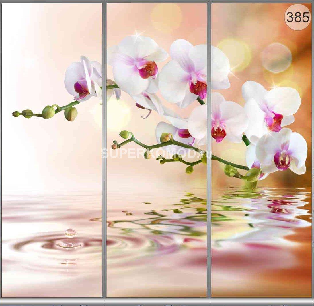 фотопечать на шкаф купе цветы 385