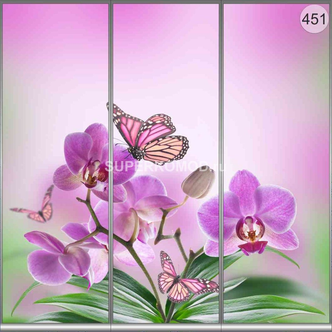 фотопечать на шкаф купе цветы 451