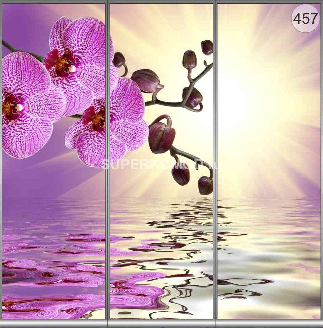 фотопечать на шкаф купе цветы 457